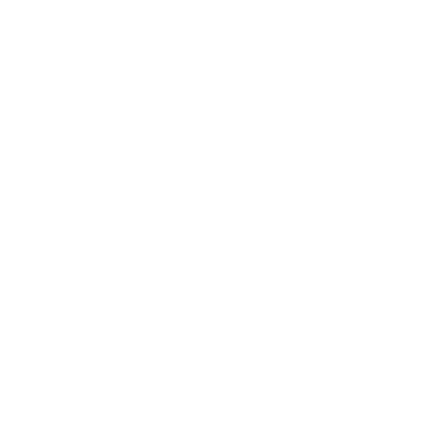 110 1