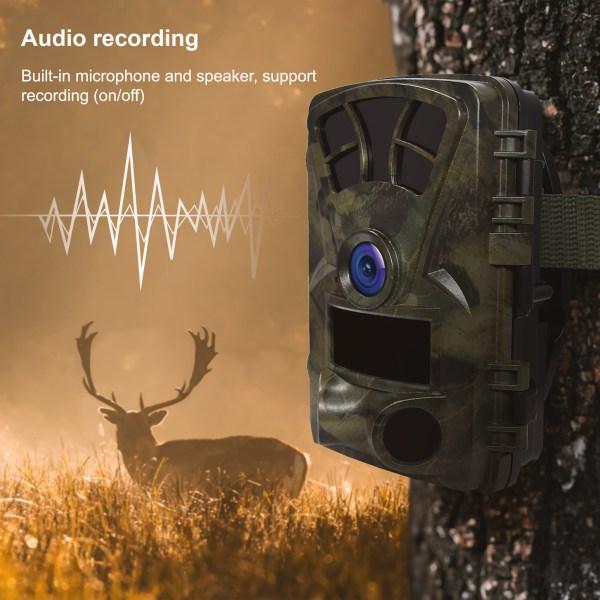 H2 Audio