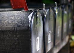 Does your tour or activity business need a newsletter