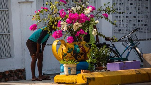 myanmar-flower-pot-protests-yangon-mar18-2021.jpg
