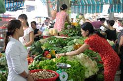 vegetable-stall-in-govap-250.jpg