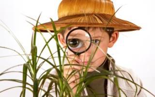 job search esplorare