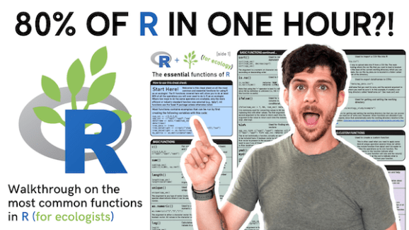 """Video thumbnail of tutorial on the essentials of R cheatsheet. Words say """"80% of R in one hour?!"""