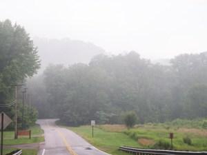 最近よく霧が出てとっても幻想的です。