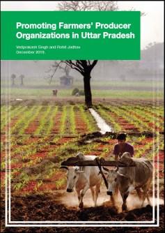 case-study-promoting-farmers-producer-organizations-in-uttar-pradesh