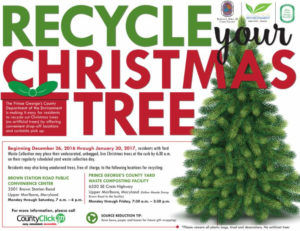 Recycle Christmas Tree - Flier