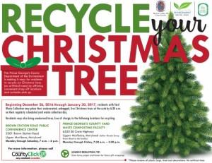 Recycle Christmas Tree/ yard waste - Flier