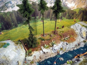 Bachufer Wald entsteht