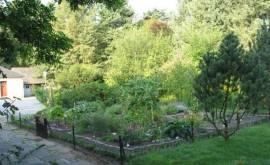 Steyler Kräutergarten