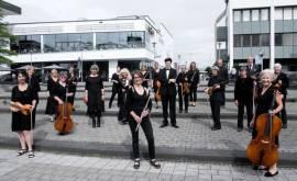 01400 62.255 2018 Collegium Musicum Foto von Christopher Henke-klein(P000663986)