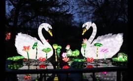 China Light-Festival im Kölner Zoo