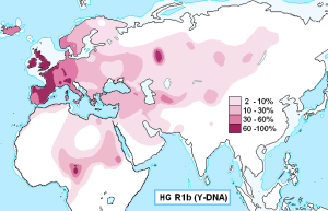 haplogroup_r1b_y-dna