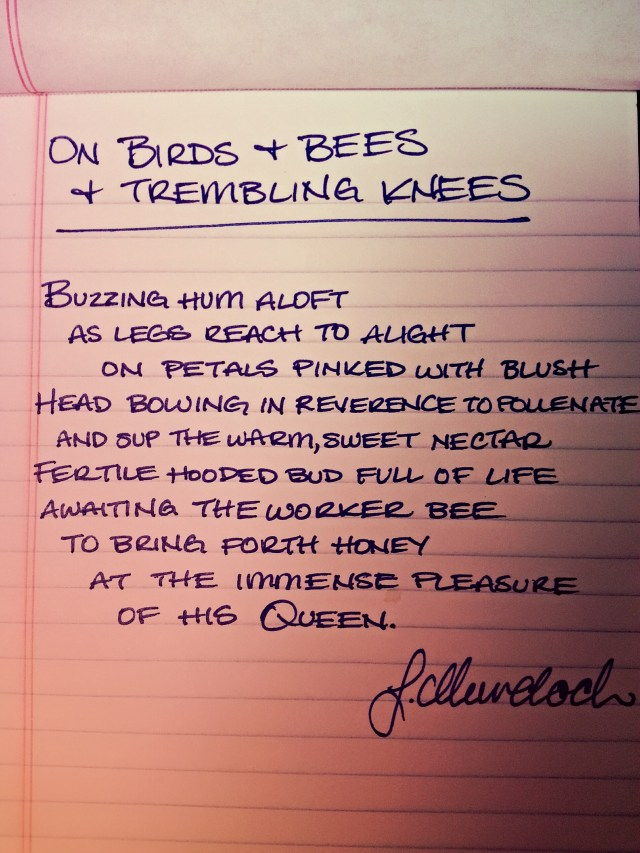 On Birds & Bees & Trembling Knees