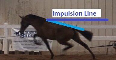 web impulsion line