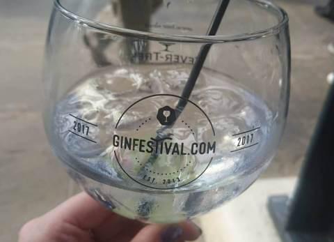 Gin Festival 1