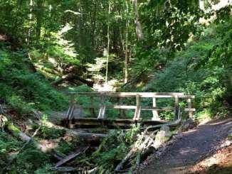 Tretschbachtal Valley, Siebengebirge, Bad Honnef