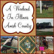 I spent an awesome weekend in Illinois Amish Country spending time with family and supporting a good cause.