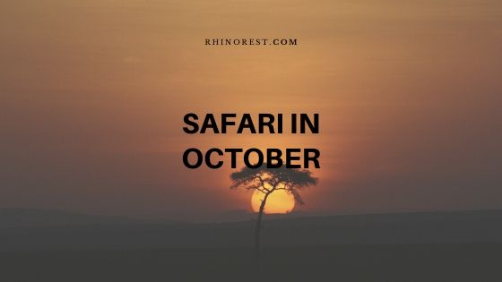 What is the Specialty of a Safari in October?
