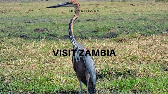 best place time visit zambia