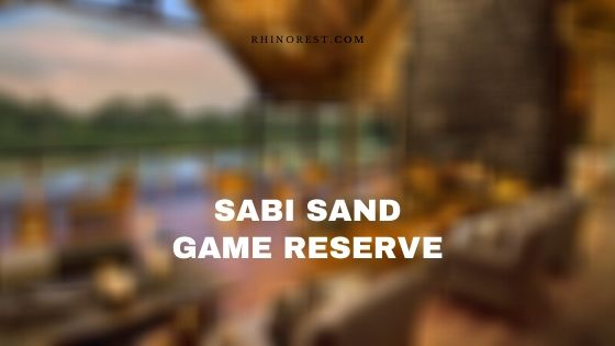 Sabi Sand Game Reserve South Africa – Reviews   Features