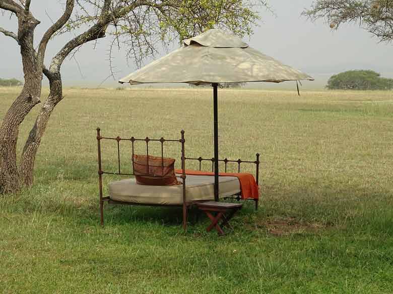 Lewa Safari Camp Kenya – Reviews | Location | Activities