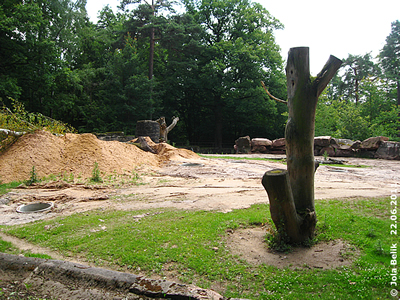 Arbeiten an der ehemaligen Elefanten-Anlage, Tiergarten Nürnberg, 22. Juni2011
