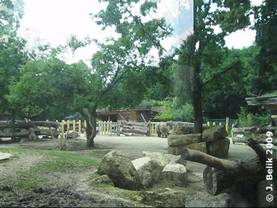 Blick in den rückwärtigen Teil, 17. Juni 2009