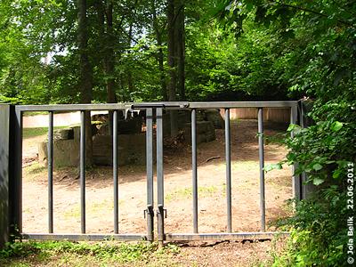 BLick au den hitneren Teil der großen Außenanlage, Tiergarten Nürnberg, 22. Juni 2011