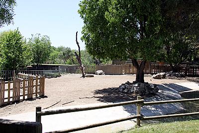 Außenanlage, mit Batschii rechts hinten, 20. Mai 2010