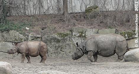 Tarun (li) und Mama Jhansi (re), 27. Februar 2011