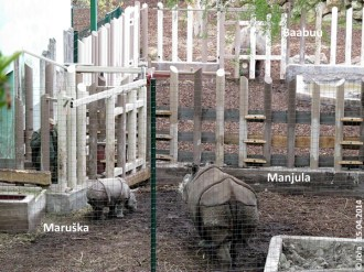Manjula und Maruška