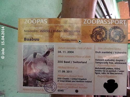 Zoopass Baabuu