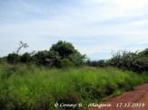 Akagera