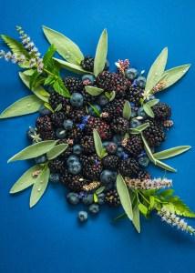 Black and Blue - Midnight Blue Tarts with Saffron Cream
