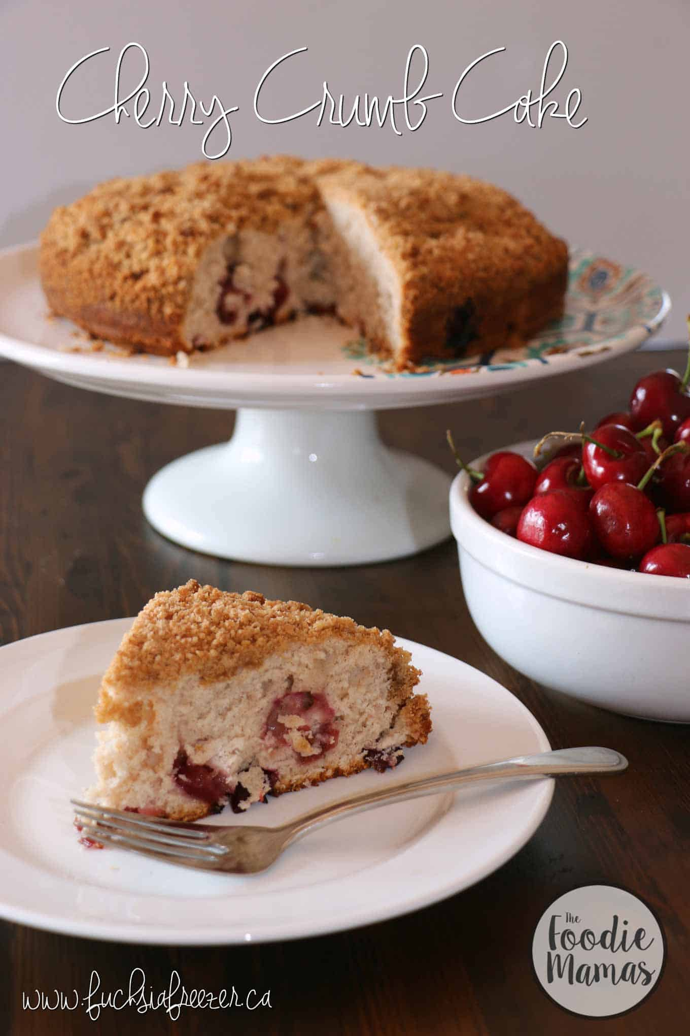 Cherry crumb cake + 8 more delicious cherry recipes from The Foodiemamas!