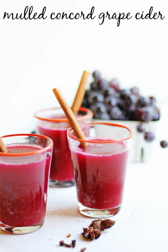 30 minute mulled concord grape cider recipe! Make a batch on your stovetop and make your house smell like fall! Sweet enough without any sugar added. The perfect drink for your fall party, or just getting cozy. Naturally vegan and refined sugar free. // Rhubarbarians #grapecider #falldrink