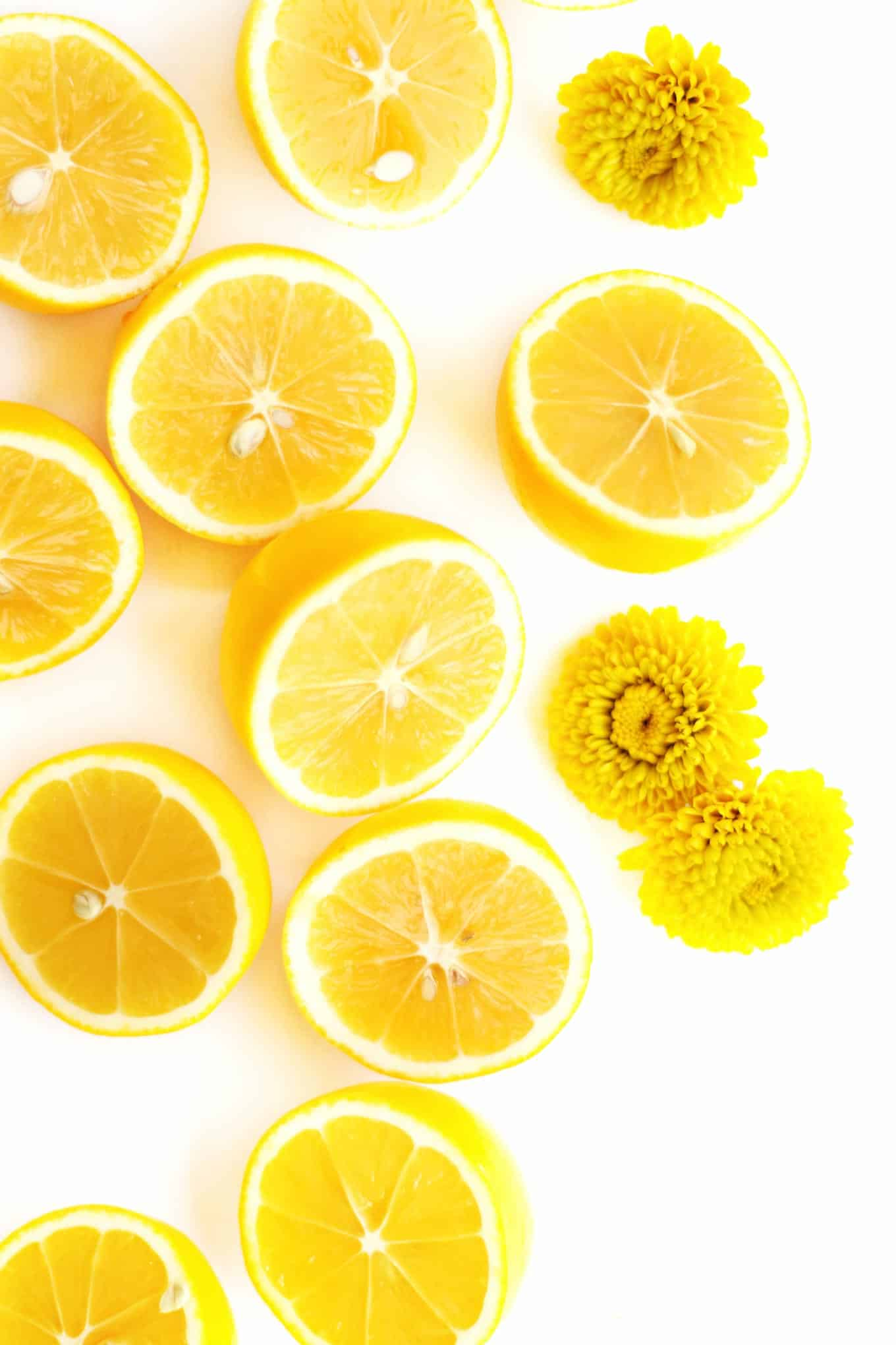 meyer lemon photography