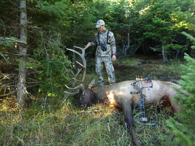 Unguided/Do-it-Yourself/DIY Montana Elk Hunting from a