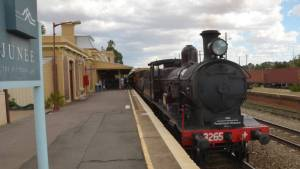 Steam Locomotive 3265 at Junee Station during the 2014 Rhythm n Rail Festival