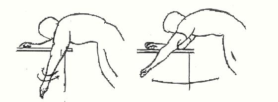 L articolazione della spalla è una delle più complesse del nostro corpo   unendo l omero con scapola e la clavicola fc5e570e4826