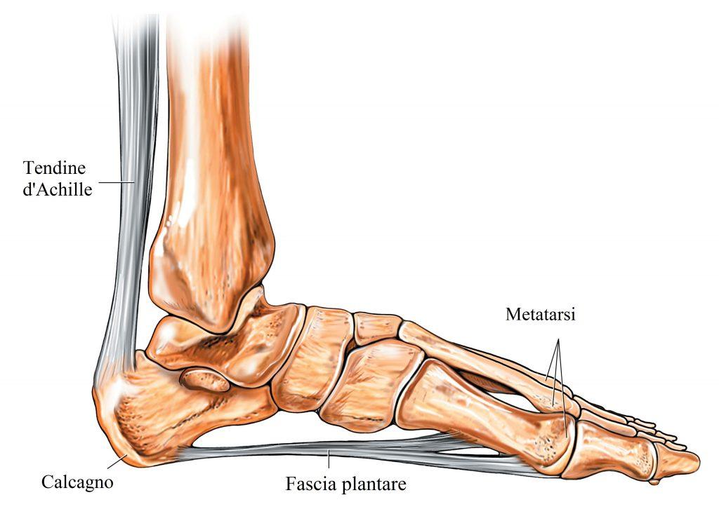 Artrite nei rimedi del ginocchio. Artrosi al ginocchio: sintomi, cause e terapia della gonartrosi