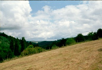 Fhorizon2004-25