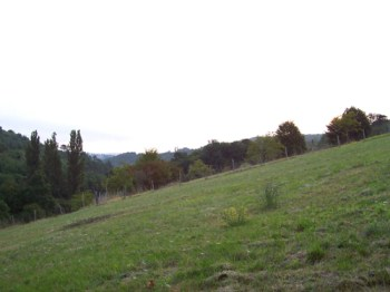 Fhorizon2005-12