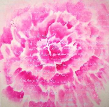 roos 50 bij 50 met tekst my rose2