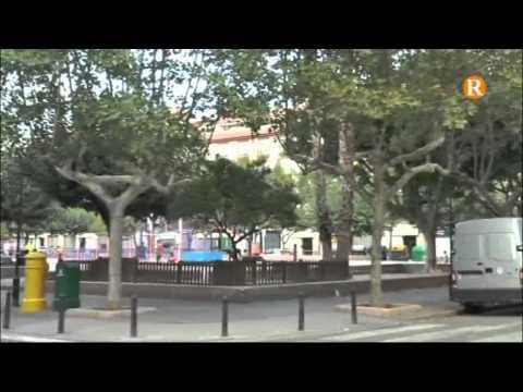 El PSOE exigeix un major control sobre  la neteja de les zones verdes d'Alzira
