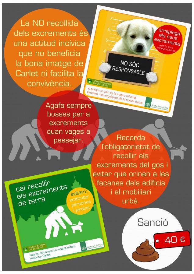 L'Ajuntament inicia una campanya de sensibilització de recollida d'excrements d'animals al carrer