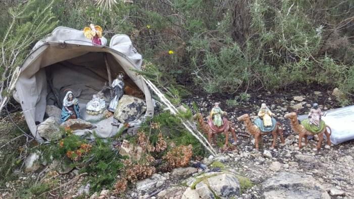 El passat diumenge, 8 de gener,es va baixar el Betlem muntanyer instal·lat  el 18 de desembre en l'ombria de la Murta