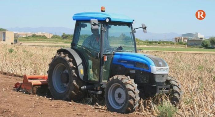 AVA alerta de l'abandó de terres en l'horta valenciana