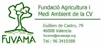 FUVAMA premia a Ribera TV i a la pintora Esther Mateos Cózar per  'Lluvia y viento'