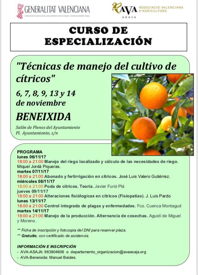 Beneixida acull un curs especialitzat sobre el cultiu de cítrics